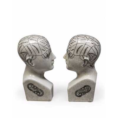 Antiqued Pair of Ceramic Phrenology Head Bookends Ornaments 21x4x9cm Each