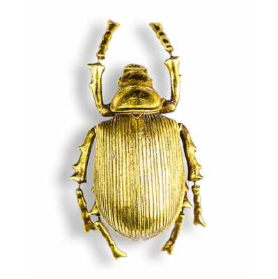 Antique Large Gold Detailed Strive Back Beetle Wall Decor 22x11x7.5cm