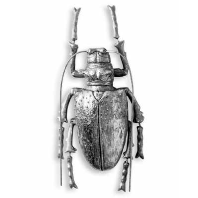 Antique Large Rustic Silver Contemporary Beetle Wall Decor Hanging Sculpture 27.5x13.5x6cm